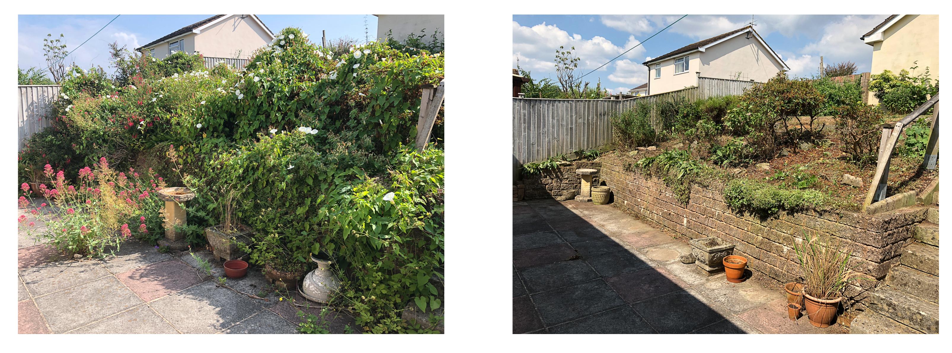 Garden clearance Honiton July 2018