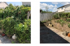 Garden clearance Honiton July 2018