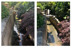 brook tidy and clearance Sidmouth June 2018